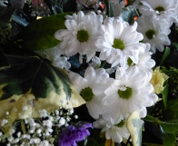 Porch Easter 2015 (14)