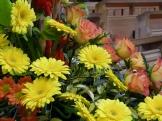 Harvest Flowers 2015 (1)